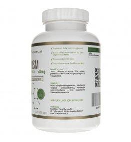 Progress Labs MSM (siarka organiczna) 500 mg - 250 tabletek