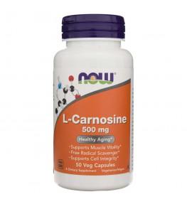 Now Foods L-Carnosine (L-Karnozyna) 500 mg - 50 kapsułek
