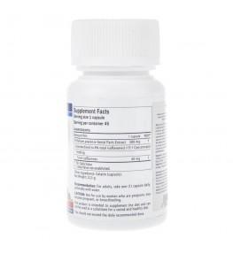 Medica Herbs Red Clover (Czerwona koniczyna) 500 mg - 45 kapsułek