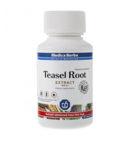 Medica Herbs Teasel root (Szczeć pospolita) 240 mg - 150 kapsułek