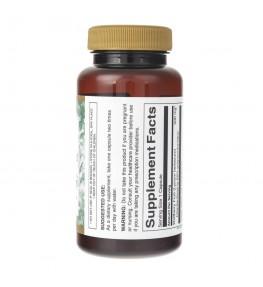 Swanson Goji ekstrakt standaryzowany 500 mg - 60 kapsułek