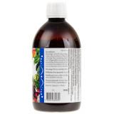 Holistic SuperVitalis (mieszanka owoców, warzyw, alg i ziół) - 450 ml