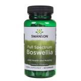 Swanson Boswellia (Kadzidłowiec) Forte 800 mg - 60 kapsułek